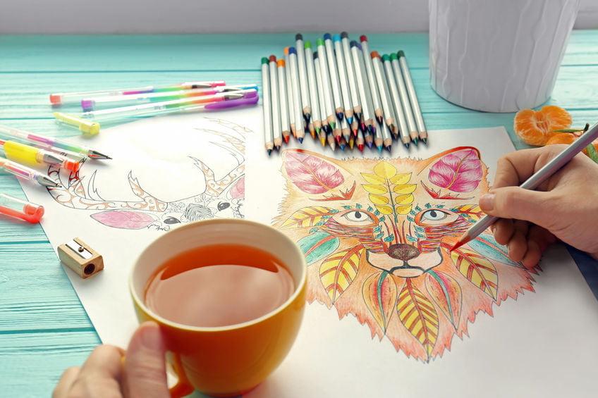 Kleurpotloden voor volwassenen voor zowel beginners als gevorderden