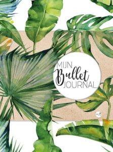 MUS mijn bullet journal